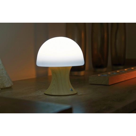 Colour Changing Wireless Usb Rechargeable Led Mushroom