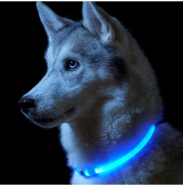 Auraglow Super Bright LED Light Up Dog Collar High Visibility Flashing Safety Pet Leash - RED