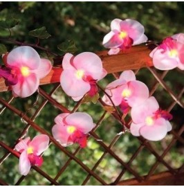 Solalux Set of 12 Orchid Flower Garden Solar String Lantern Fairy Lights Lamps …