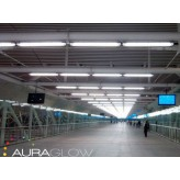 Auraglow 25w 5ft 1500mm Cool White, 6000k, 2400lm T8 Fluorescent LED Tube Light