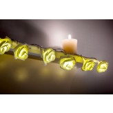 Auraglow Set of 12 Battery Operated 2.5m Indoor String LED Fairy Lights with Warm White Glow - White Rose.3