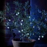 Auraglow Set of 20 Solar Crystal Ball Garden Outdoor LED String Lights - Warm White