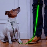 Auraglow dog lead green