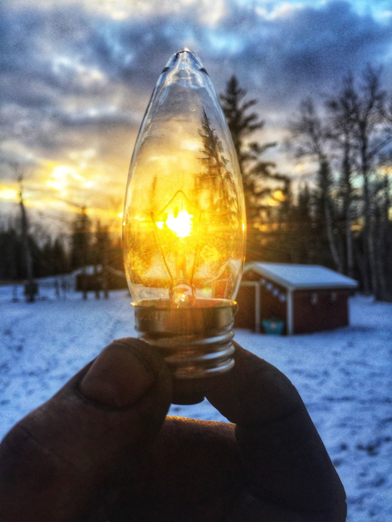 Sun shining through a bulb